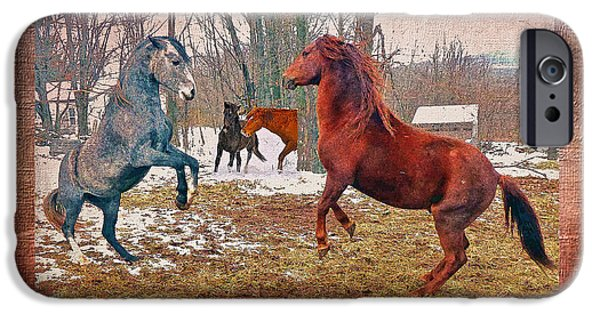 Paso Fino Stallion iPhone Cases - Friend Or Foe iPhone Case by Patricia Keller