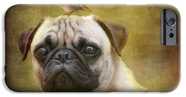 Puppy Digital Art iPhone Cases - Friends like pug and bird iPhone Case by Barbara Orenya