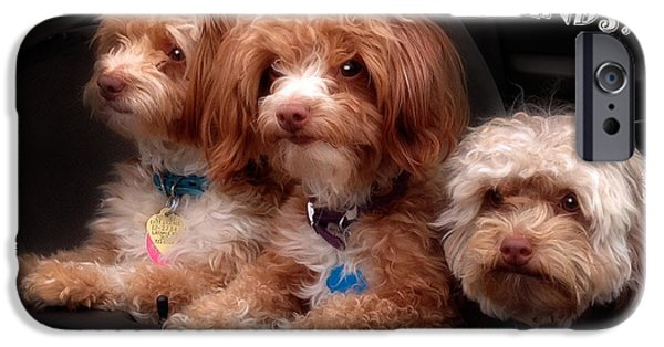 Puppy Love Greeting Cards iPhone Cases - Friends iPhone Case by Mark Baker