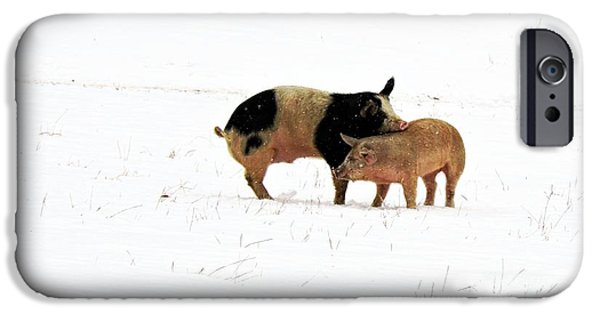 Agriculture iPhone Cases - Friendship # 1 iPhone Case by Marcia Lee Jones