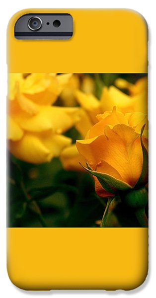 Friendship Roses iPhone Case by Rona Black