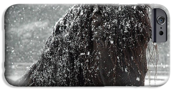 Artwork Photographs iPhone Cases - Friesian Snow iPhone Case by Fran J Scott