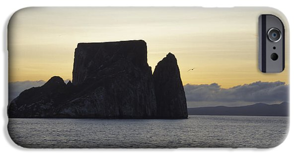 Sea Birds iPhone Cases - Frigate Flying by Kicker Rock iPhone Case by Brian Kamprath
