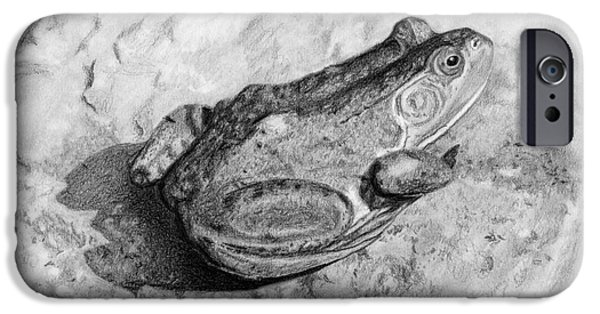 Animal Drawings iPhone Cases - Frog On Rock iPhone Case by Sarah Batalka