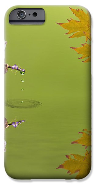 Aquatic Mixed Media iPhone Cases - Frog iPhone Case by Sharon Lisa Clarke