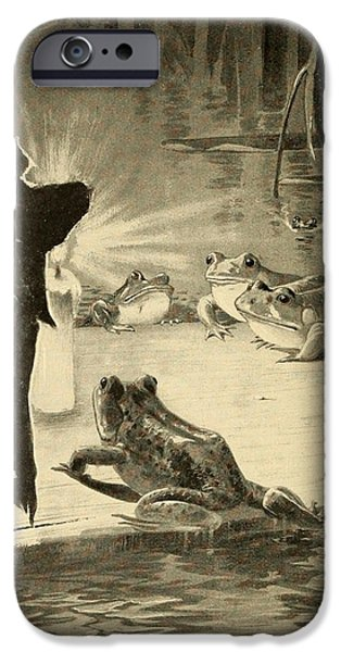 Frogs and Candle iPhone Case by Philip Ralley