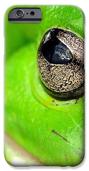 Frog's Eye iPhone Case by Kaye Menner