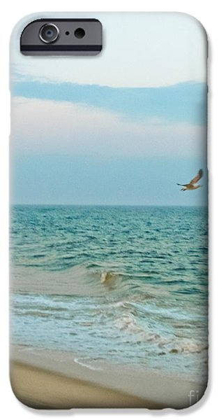 Flying Seagull iPhone Cases - Frolic iPhone Case by Colleen Kammerer