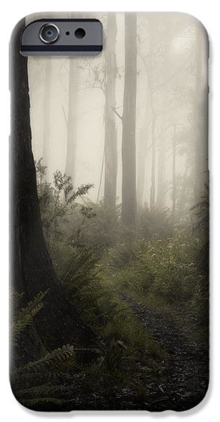 Fog iPhone Cases - From Darkness iPhone Case by Amy Weiss