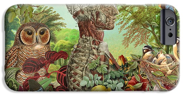 Decorative Digital Art iPhone Cases - From the Garden iPhone Case by Gary Grayson