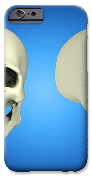 Front View And Side View Of Human Skull iPhone Case by Stocktrek Images