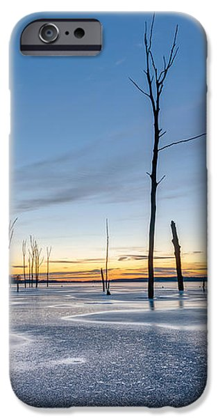 Frost Bite iPhone Case by Michael Ver Sprill