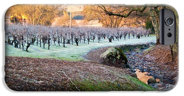 Oak Creek iPhone Cases - Frost In the Valley iPhone Case by Bill Gallagher