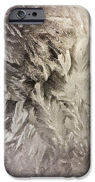 Frost Photographs iPhone Cases - Frost iPhone Case by Jeff Klingler