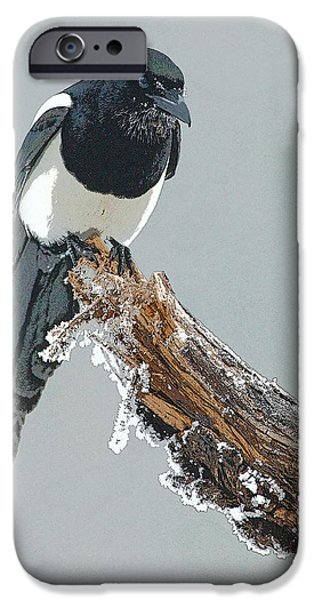 Frosted Magpie- Abstract iPhone Case by Tim Grams
