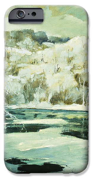 Frosted Trees iPhone Case by Jonas Lie