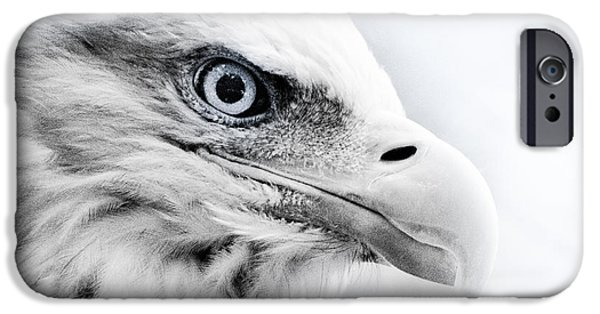 Monochrome iPhone Cases - Frosty Eagle iPhone Case by Shane Holsclaw