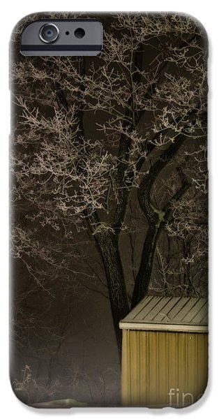 Snowy Night iPhone Cases - Frosty Foggy Night iPhone Case by Lois Bryan