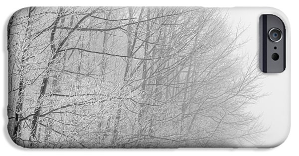 Wintertime iPhone Cases - Frosty Forest Frontier iPhone Case by Chris Bordeleau
