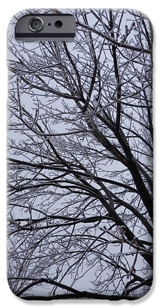 Winter Storm iPhone Cases - Frozen 3 iPhone Case by Pema Hou