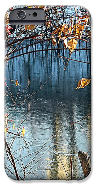 Fallen Leaf On Water iPhone Cases - Frozen Blue iPhone Case by Kathy Barney