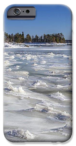 Frozen iPhone Case by Evelina Kremsdorf