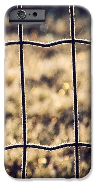 Frozen iPhone Cases - Frozen Fence iPhone Case by Wim Lanclus