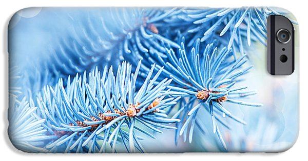 Wintertime iPhone Cases - Frozen fir tree background iPhone Case by Anna Omelchenko