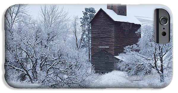 Winter Scene iPhone Cases - Frozen in Time iPhone Case by Darren  White