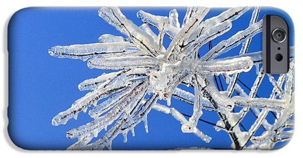 Winter Storm iPhone Cases - Frozen iPhone Case by Kelley King