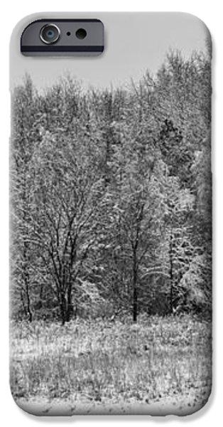 Frozen iPhone Case by Sebastian Musial