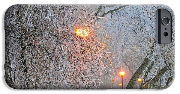 Winter Storm iPhone Cases - Frozen iPhone Case by Terri Gostola
