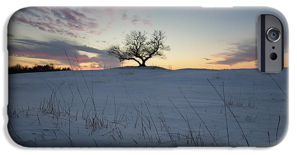 Mounds iPhone Cases - Frozen Tree of Wisdom iPhone Case by Aaron J Groen
