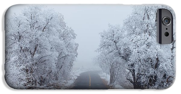 Winter Scene iPhone Cases - Frozen Trees iPhone Case by Darren  White