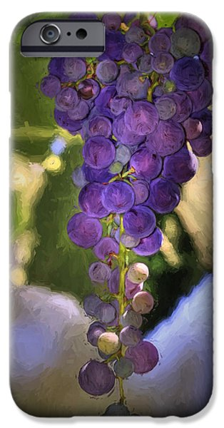 Concord iPhone Cases - Fruit of the Vine iPhone Case by Donna Kennedy