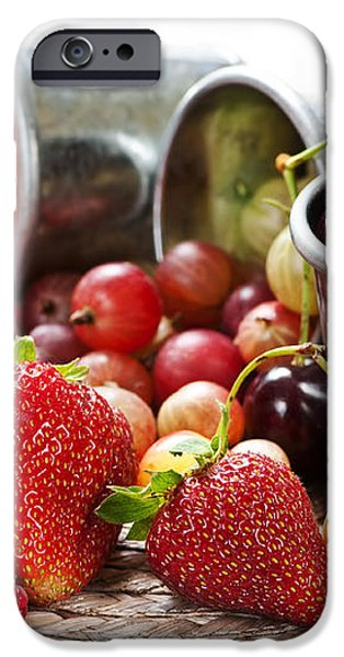 Fruits and berries iPhone Case by Elena Elisseeva