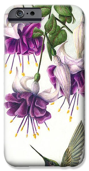 Colored Pencils iPhone Cases - Fuchsia Beauty iPhone Case by Pat Erickson