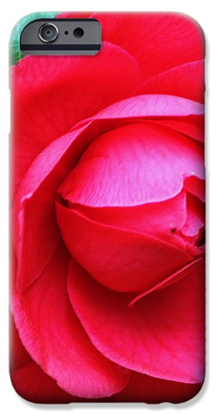 Fuchsia Camellia in Pastel iPhone Case by Suzanne Gaff