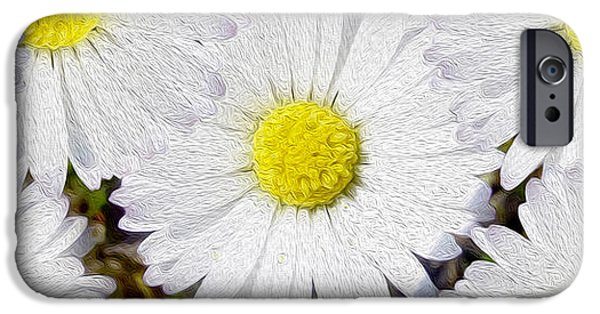 White Daisies iPhone Cases - Full Bloom iPhone Case by Jon Neidert