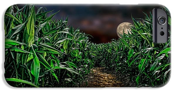 Crops iPhone Cases - Full Moon Over Dark Corn Field iPhone Case by Panoramic Images