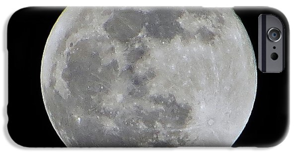 Moonscape iPhone Cases - Full Moon Over Florida iPhone Case by Tim Townsend