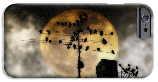 Roosting iPhone Cases - Full Moon Roost iPhone Case by Bill Cannon