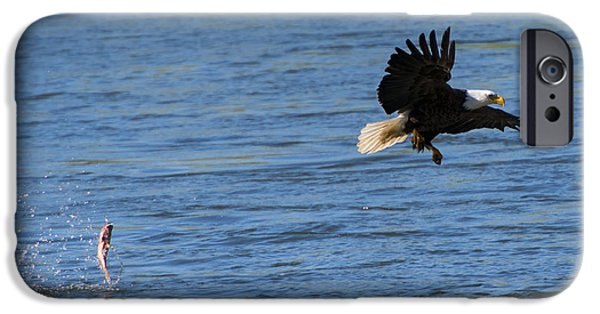 Eagle Photographs iPhone Cases - Fumble iPhone Case by Mike Dawson