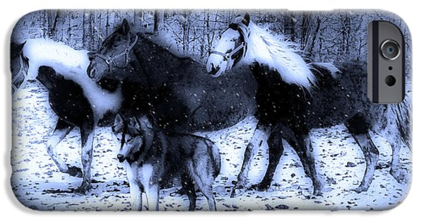 Huskies iPhone Cases - Fun in the Snow iPhone Case by Pennie  McCracken