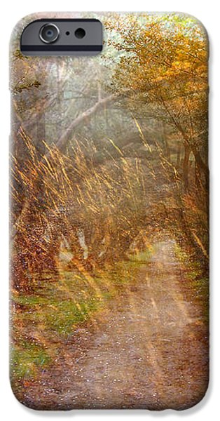 Funky Sunset 2 iPhone Case by Marty Koch