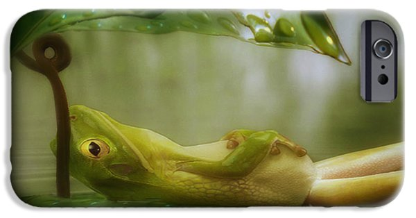 Ponder iPhone Cases - Funny Happy Frog iPhone Case by Jack Zulli