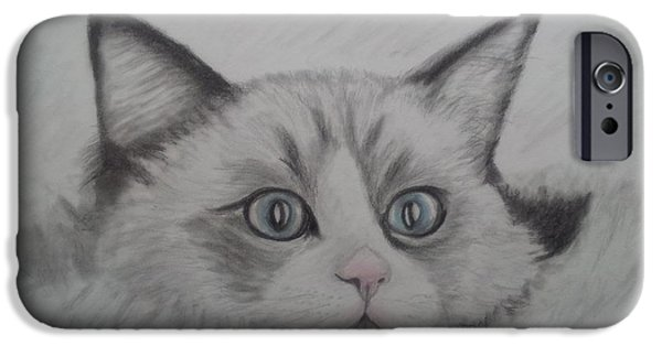 Beautiful Cat Drawings iPhone Cases - Fur Blankie iPhone Case by Julie Brugh Riffey