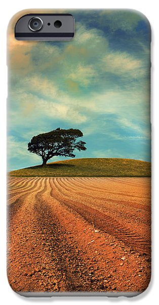 Oak Trees iPhone Cases - Furrows iPhone Case by Mal Bray