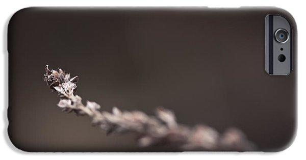 Winter iPhone Cases - Further iPhone Case by Shane Holsclaw