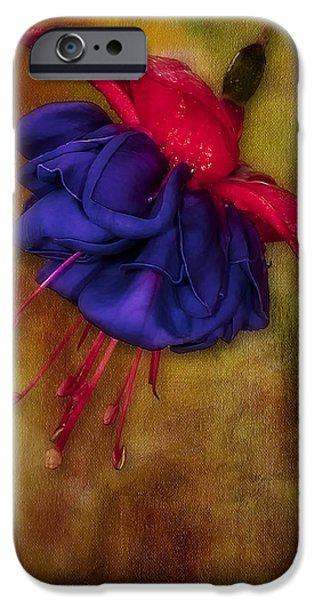 Fuschia Flower iPhone Case by Susan Candelario
